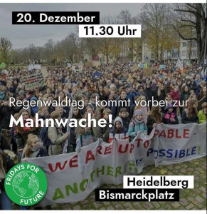 Mahnwache Fridays for Future